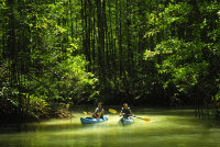 nicuesa_kayaking_chico